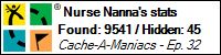 Stats Bar for Nurse Nanna