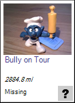 Bully on Tour